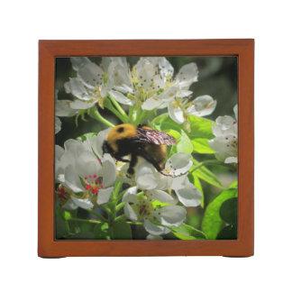 Dos manosean abejas en primavera