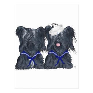 Dos marineros de Skye Terrier Postales