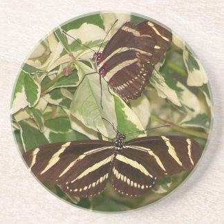 Dos mariposas de la cebra en follaje posavasos manualidades