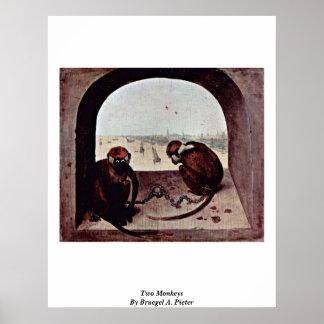 Dos monos por Bruegel A. Pieter Posters