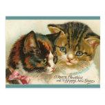 Dos navidad de los gatitos