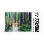 Dos novias en el bosque franqueo