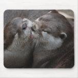 Dos nutrias adorables alfombrilla de ratón
