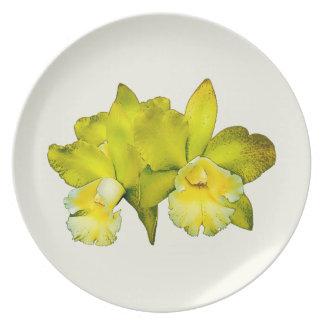 Dos orquídeas amarillas plato