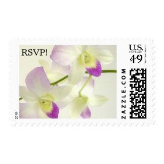 ¡Dos orquídeas, RSVP! Sellos