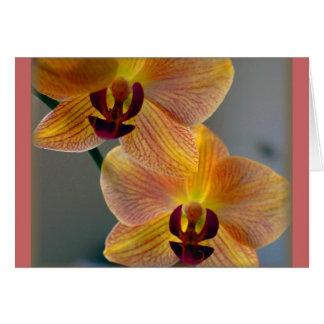 """""""Dos orquídeas """" Felicitaciones"""