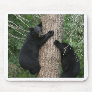 dos osos en un árbol tapetes de raton