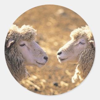 Dos ovejas pegatina redonda