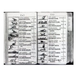 Dos páginas de 'Orbis Sensualium Pictus Tarjetas Postales