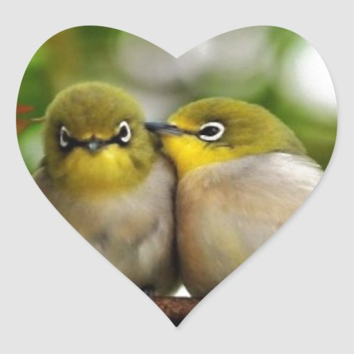 Dos pájaros amarillos pegatina en forma de corazón
