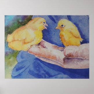 Dos pájaros disponibles póster