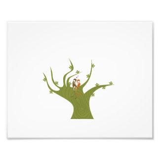 Dos pájaros en el extracto verde oliva tree.png fotografías