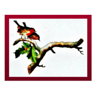 Dos pájaros que se colocan en una rama que mira ab postales