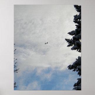 Dos pájaros que vuelan arriba póster