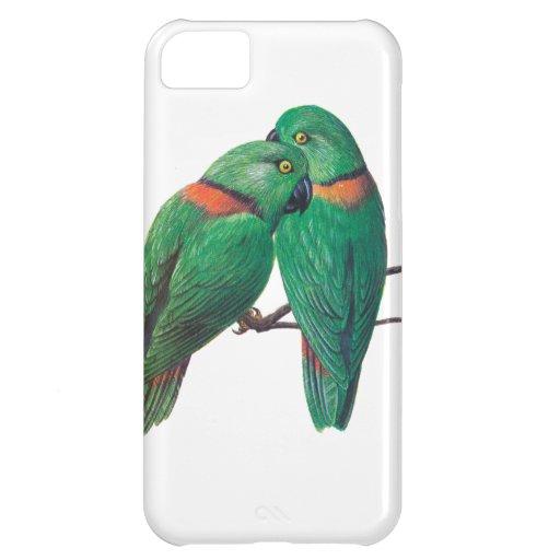 Dos pájaros verdes