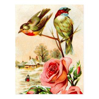 Dos pájaros y rosas tarjeta postal