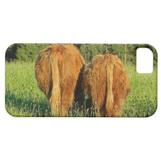 Dos partes posteriores del ganado de la montaña en funda para iPhone 5 barely there