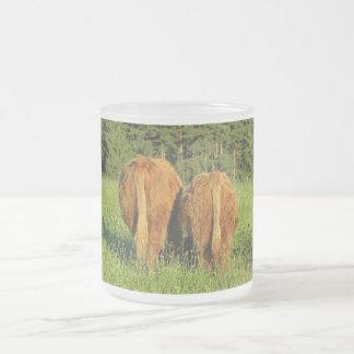 Dos partes posteriores del ganado de la montaña en taza de café esmerilada