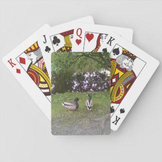 Dos patos cartas de póquer