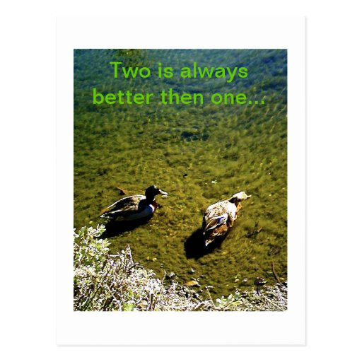 Dos patos postal