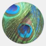 Dos pegatinas azules de las plumas del pavo real