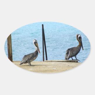 Dos pelícanos en el embarcadero, Curaçao el Pegatina Ovalada