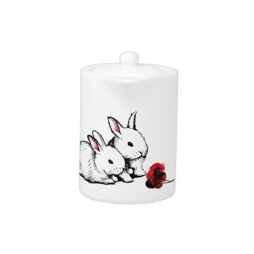 Dos pequeños conejos blancos