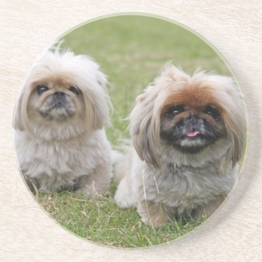 Dos pequeños perritos felices posavasos diseño