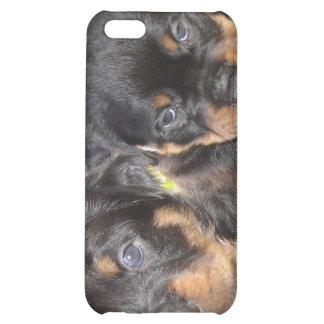 Dos perritos dañosos de Rottweiler