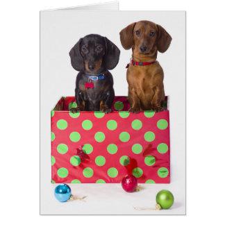 Dos perritos del Dachshund Tarjeta De Felicitación