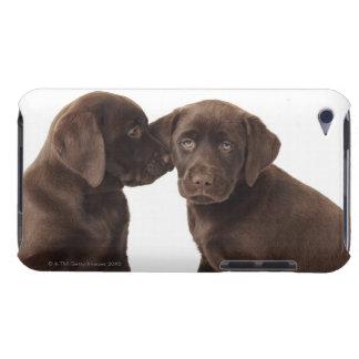 Dos perritos del labrador retriever del chocolate cubierta para iPod de barely there