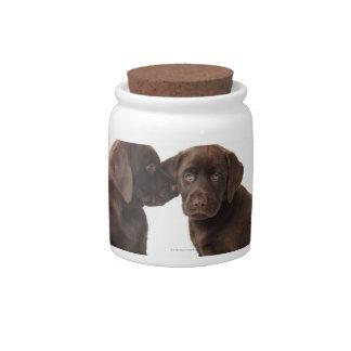 Dos perritos del labrador retriever del chocolate platos para caramelos