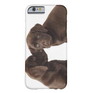 Dos perritos del labrador retriever del chocolate funda de iPhone 6 barely there