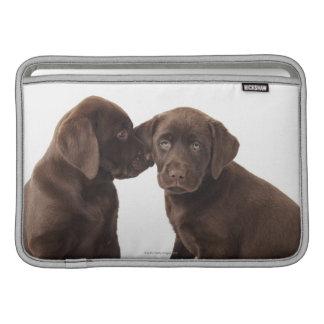 Dos perritos del labrador retriever del chocolate fundas MacBook