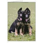 Dos perritos del pastor alemán felicitacion