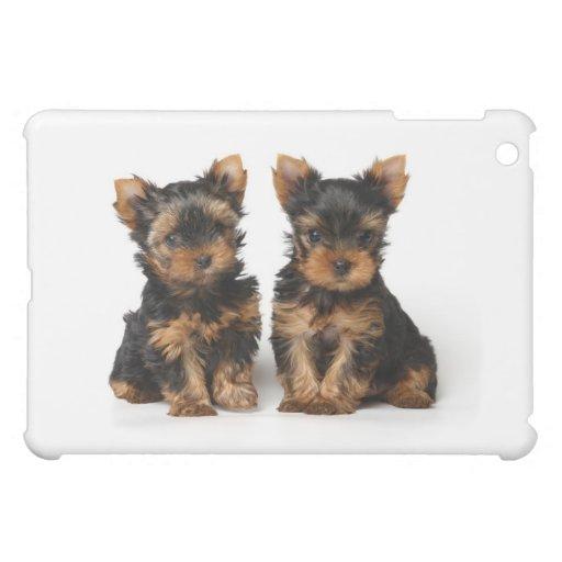Dos perritos del terrier de Yorkshire iPad Mini Protector