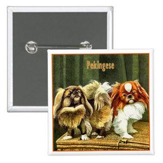 Dos perros de Pekingese Pin Cuadrada 5 Cm