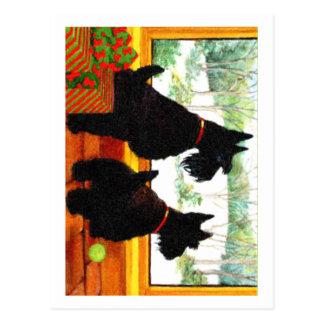 Dos perros de Scotty en el navidad Tarjetas Postales