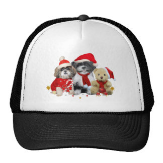 Dos perros de Shih Tzu del navidad y osos de peluc Gorro De Camionero