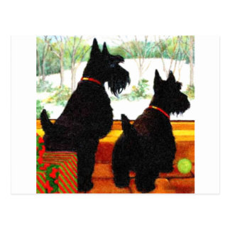 Dos perros del escocés en el navidad tarjeta postal