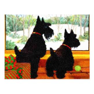Dos perros del escocés que esperan a Papá Noel Tarjetas Postales