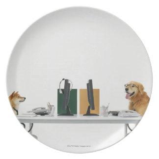 Dos perros que llevan el lazo y los vidrios, plato de cena