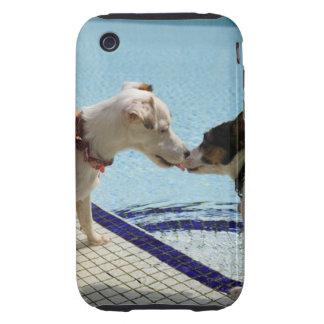 Dos perros que se besan en el poolside carcasa resistente para iPhone