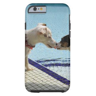 Dos perros que se besan en el poolside funda resistente iPhone 6