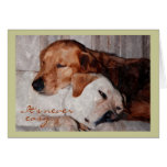 Dos perros Snuggling, condolencia de la pérdida de Tarjeton