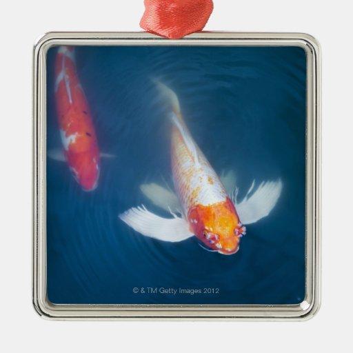 Dos pescados japoneses del koi en la charca ornamento para arbol de navidad