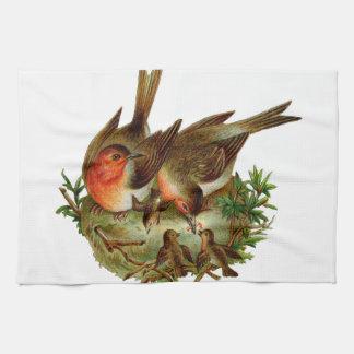 Dos petirrojos adultos preciosos junto con sus toalla de mano