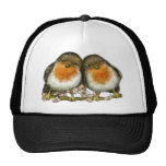 dos petirrojos gorra