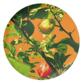 dos pimientos picantes ponen verde la parte poster platos para fiestas