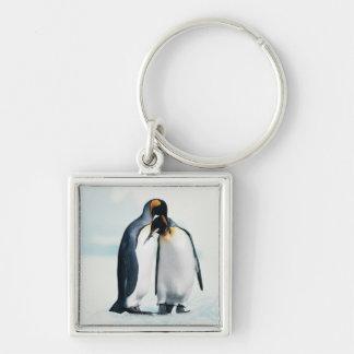 Dos pingüinos cariñosos llaveros personalizados
